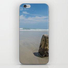 Assateague Island iPhone Skin