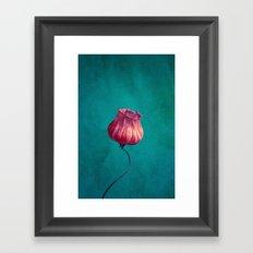 Miss Lampion Framed Art Print