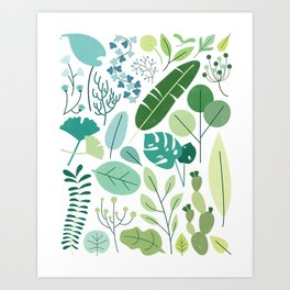 Botanical Chart Art Print