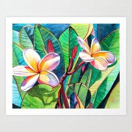 Plumeria Garden Art Print
