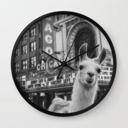 Chicago Llama Wall Clock