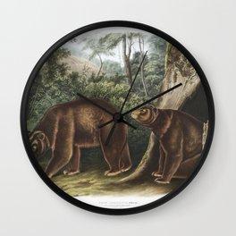 Australian Pelican (Pelecanus conspicillatus) illustrated by Elizabeth Gould (1804-1841) for John Go Wall Clock