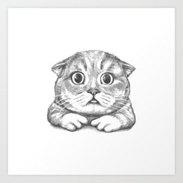 British Shorthair Cat hand drawn Art Print