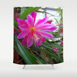 "BLOOMING FUCHSIA PINK "" ORCHID CACTUS"" FLOWER Shower Curtain"