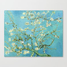 Vincent Van Gogh Almond Blossoms Canvas Print