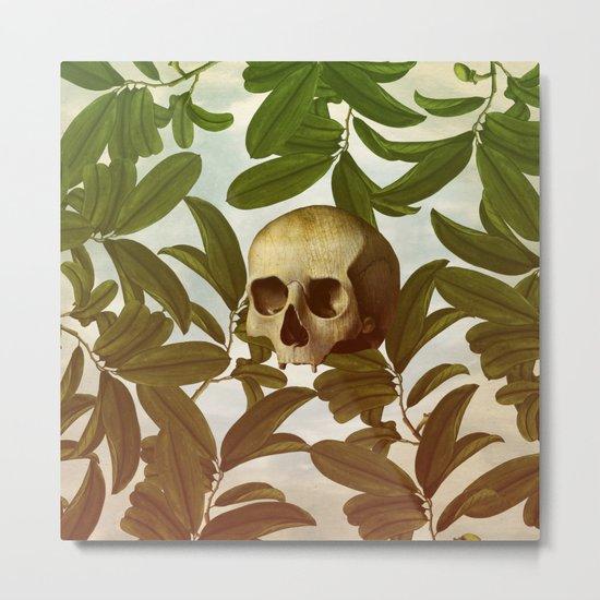 Novsade Metal Print