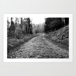 Trail On Art Print