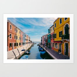 Color House Art Print