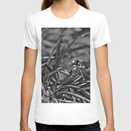 Lurking T-shirt