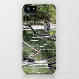 Green Heron in Channel iPhone Case