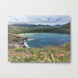 hanauma bay is bae Metal Print