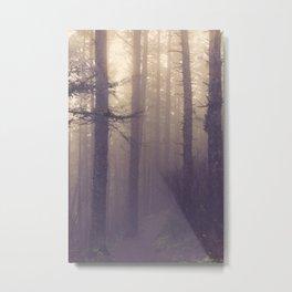 fog lifts Metal Print