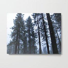 Tahoe 0343 Metal Print