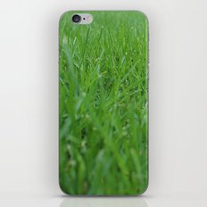 Summer Grass iPhone & iPod Skin