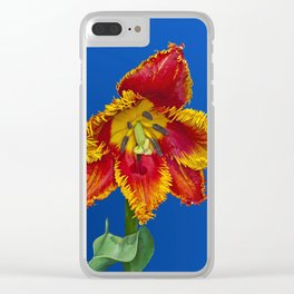 Flower tulip terry in spring Clear iPhone Case