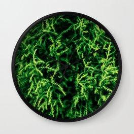 Botanical Gardens - Evergreen #939 Wall Clock