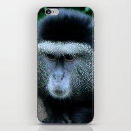 Unimpressed Monkey iPhone Skin
