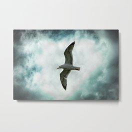 Seagull Before A Cloudy Sky Metal Print