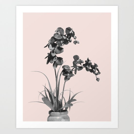 Summer orchid bloom Art Print