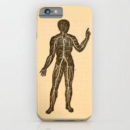 Circulatory system. iPhone Case