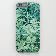 Olive Tree iPhone 6s Slim Case