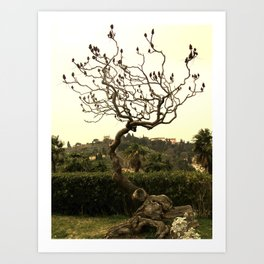 At the Boboli Gardens Art Print