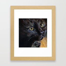 Sheila the Tortoiseshell Cat Framed Art Print