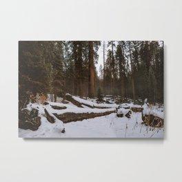 Snowy Sequoia Meadow Metal Print