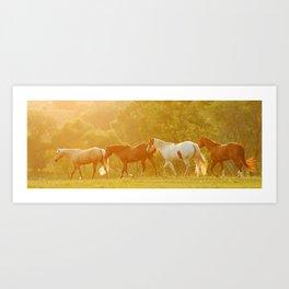 Horses @ Sunset Art Print