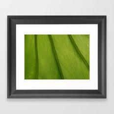 Green Leaf Texture 05 Framed Art Print