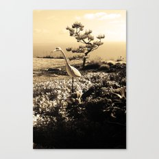 Master in Sepia Canvas Print