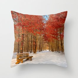 Ruby Winter Trail Throw Pillow