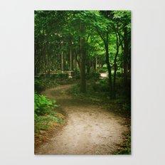 Down A Path Canvas Print