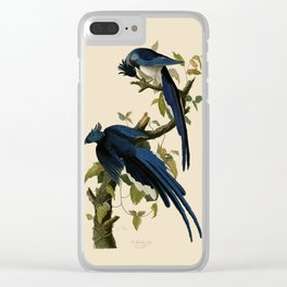 Columbia Jay Illustration by J.J. Audubon Clear iPhone Case