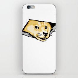 Ceiling Doge iPhone Skin