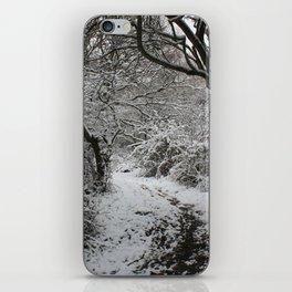 Landpark Wood iPhone Skin