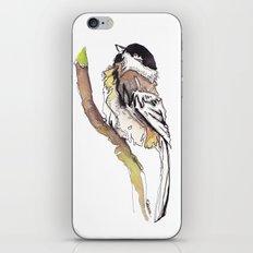 Black Capped Chickadee iPhone & iPod Skin