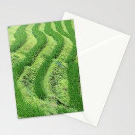 Longji Rice Terraces Stationery Cards