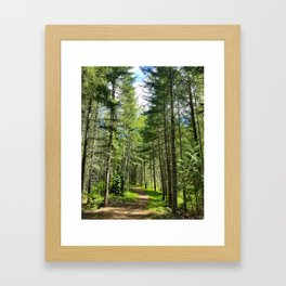 Ski Trail Framed Art Print