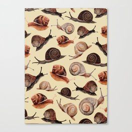 A Slew Of Snails Canvas Print