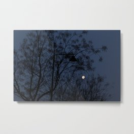 Escaped light Metal Print
