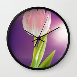 Pink tulip flower over ultra violet background wth light flare Wall Clock