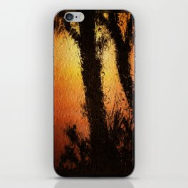 Solstice. iPhone Skin