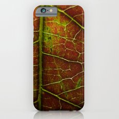 Autumn texture iPhone 6s Slim Case