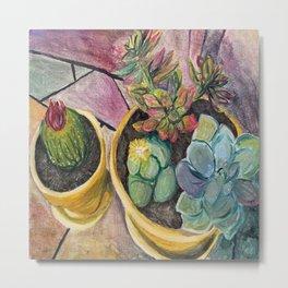 Cacti & Succulent Pots Metal Print