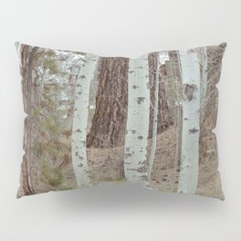 A Walk Through The Aspen Pillow Sham