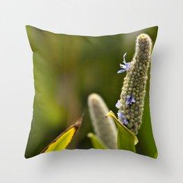 Flowered Catkin Throw Pillow