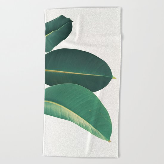 Rubber Fig Leaves II Beach Towel