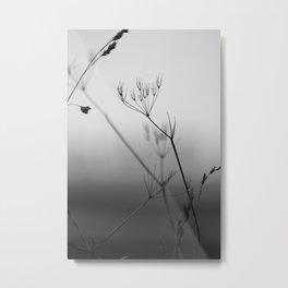 Filigrane Beauty  Metal Print
