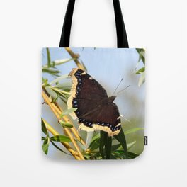 Mourning Cloak Butterfly Sunning Tote Bag